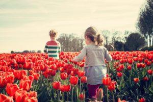 дитячий садочок як громадська організація